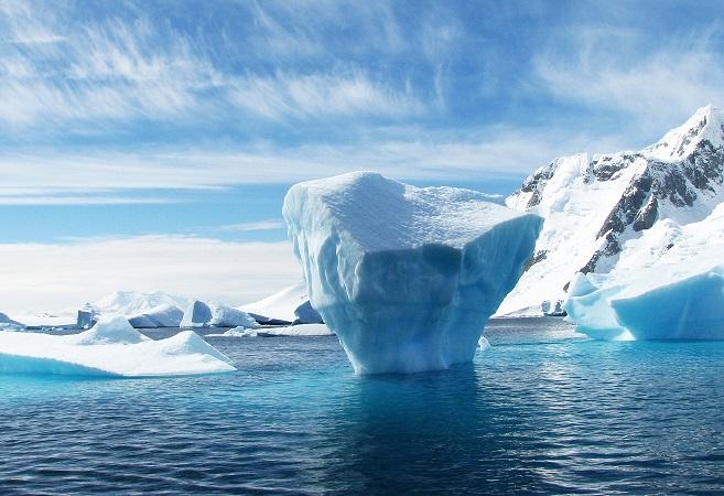 Arctic Marvel